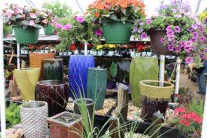 City Floral Garden Center