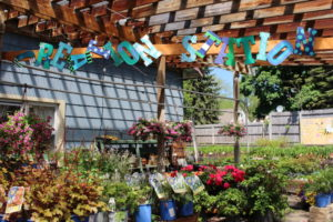 EverGreen Landscaping & Garden Center