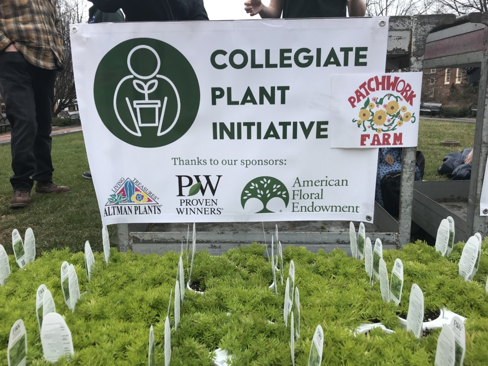 Collegiate Plant Initiative