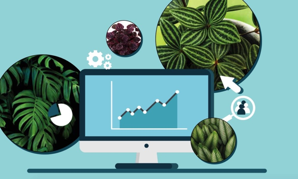 Making Data Driven Plant Decisions