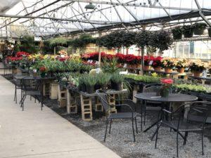 Quality Gardens Inc.