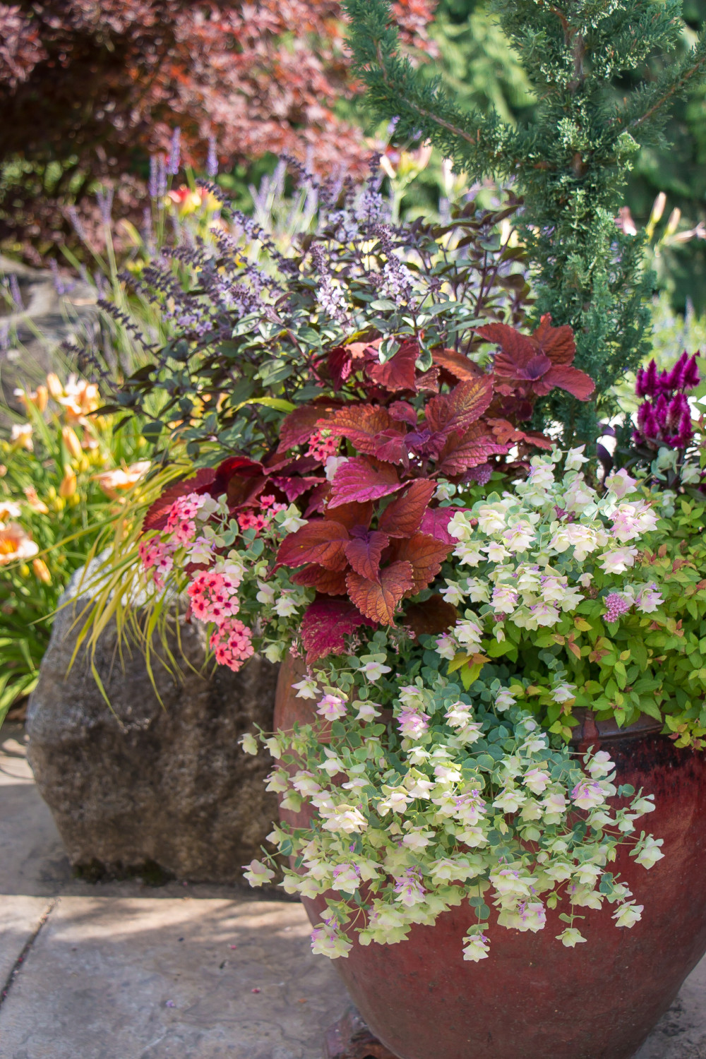 Dirty Secrets: No other category in the independent garden center covers more opportunity for sales — and, more importantly — repeat sales than containers.