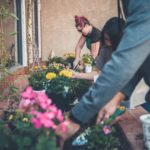New Survey Reaffirms Gardening's Popularity During Pandemic