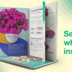 Syngenta Flowers 2021-2022 Annuals Catalog Now Available