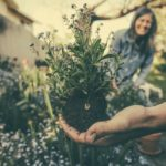 NGB Continues to Inspire Home Gardeners